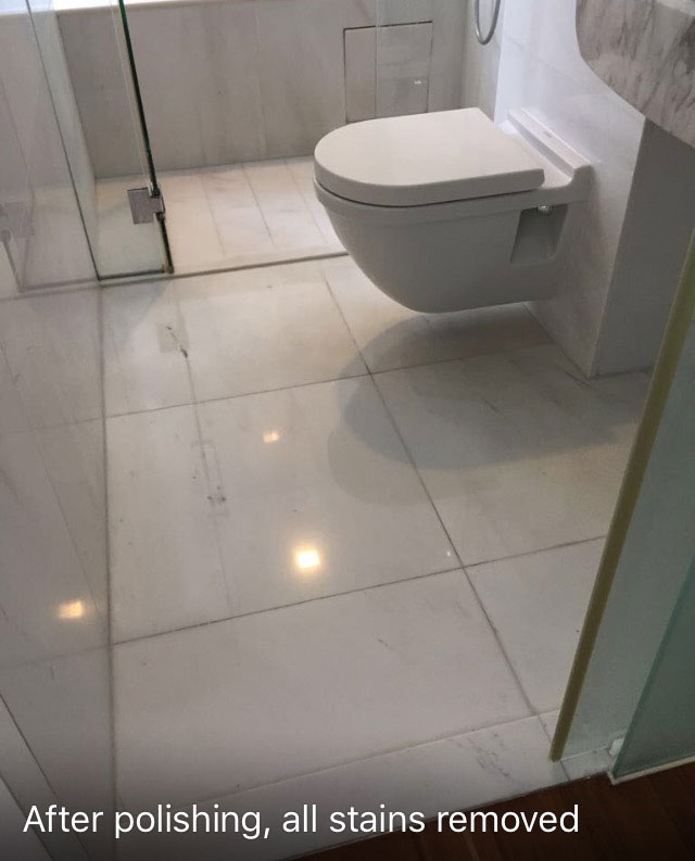 Toilet After Polishing